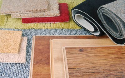 Area Rug Care Guide: How to Clean and Prevent Pet Stains and Odors