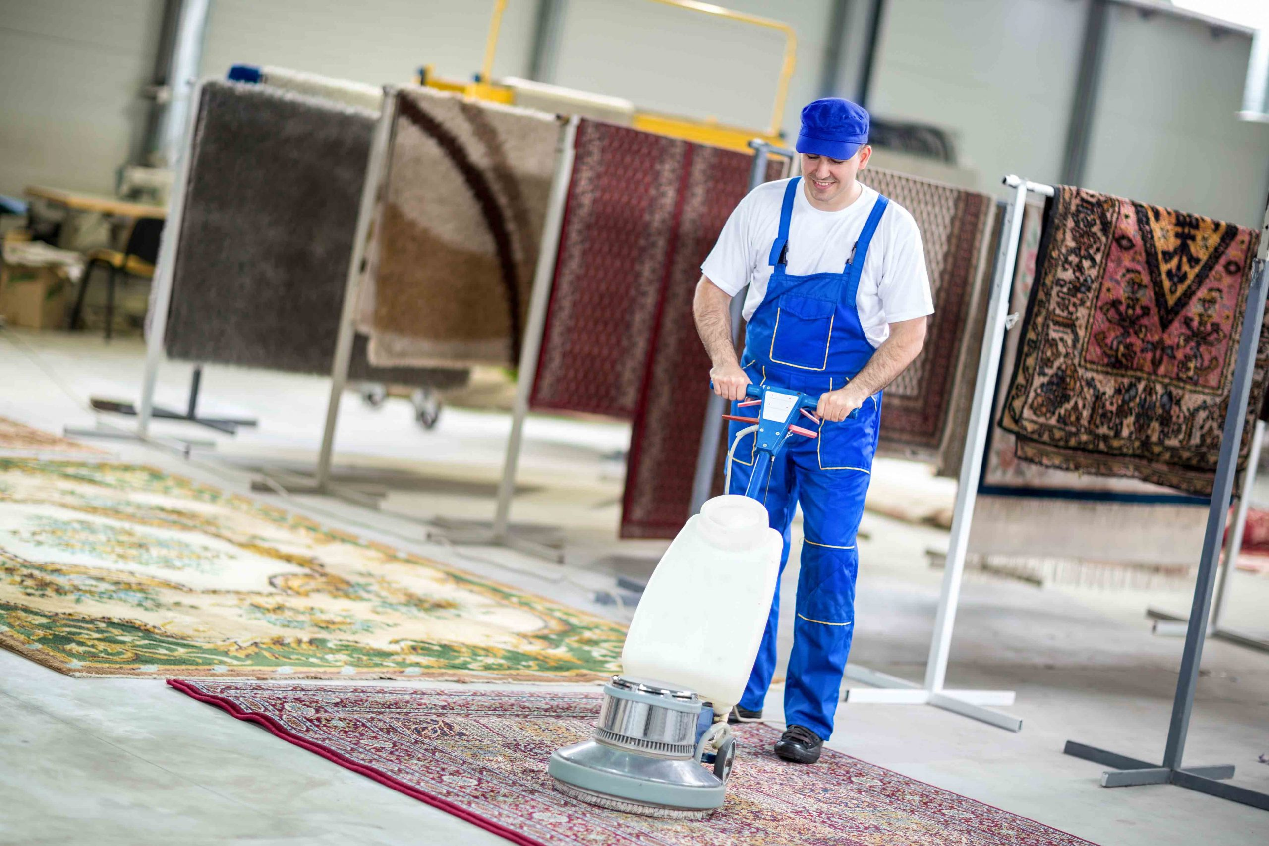 rug cleaning everett
