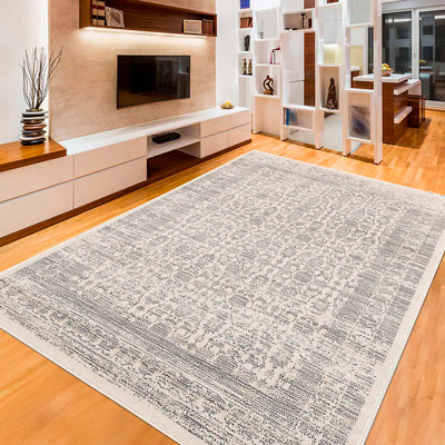 light color rug in the living