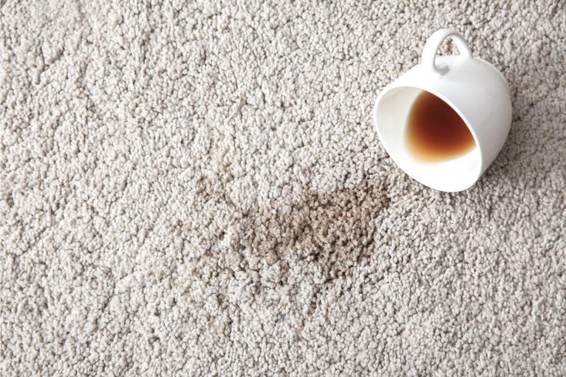 rug mold clean