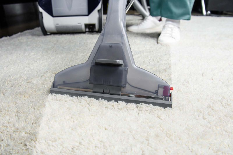 area rug cleaner